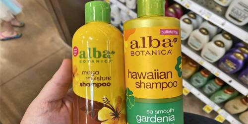 Alba Botanical Shampoo Only 99¢ Each After Cash Back at Kroger (Regularly $9)