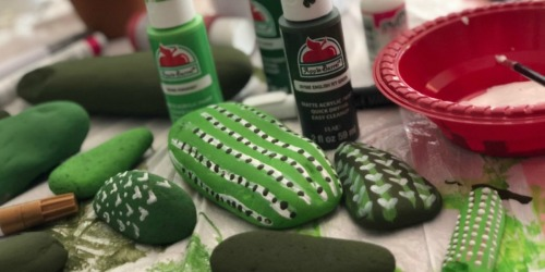 This Painted Rock Cactus Garden is a Fun DIY Project for All Ages!
