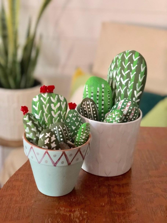 cactus rock garden in flower pots