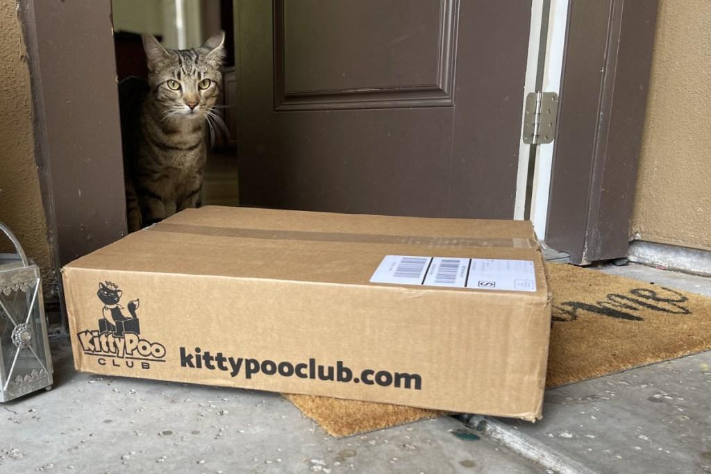 kitty poo club at door w/ cat