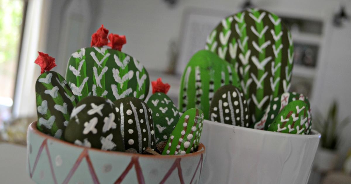 DIY cactus rock garden in flower pots