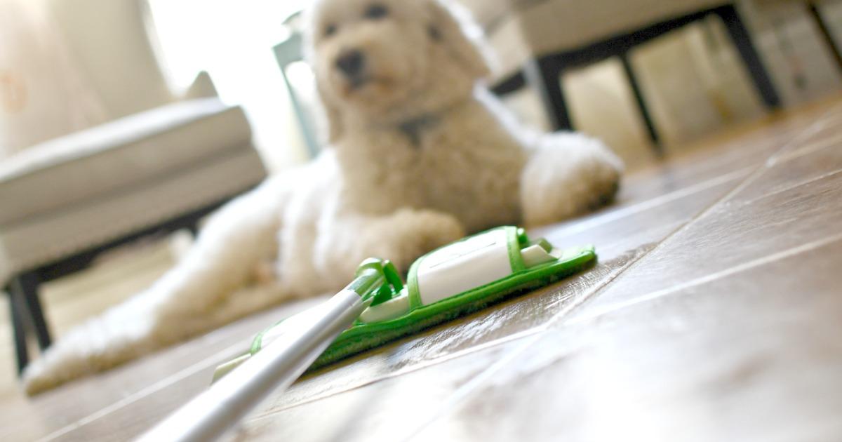 turbo swiffer pads picking up pet hair