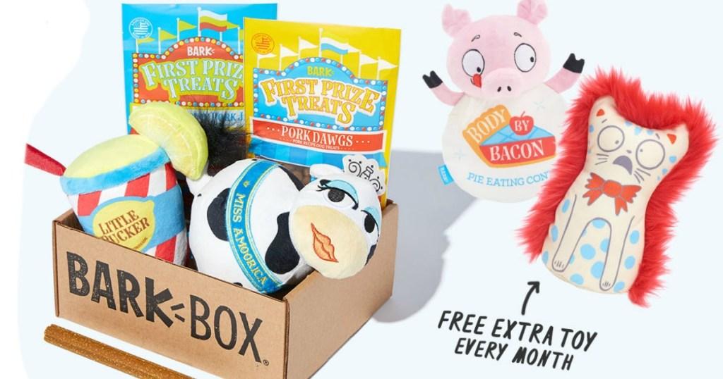 box full of dog toys