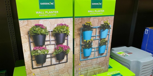 ALDI Wall Planter Only $19.99 + More Garden Finds