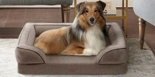 Up to 65% Off Pet Beds on Macys.com