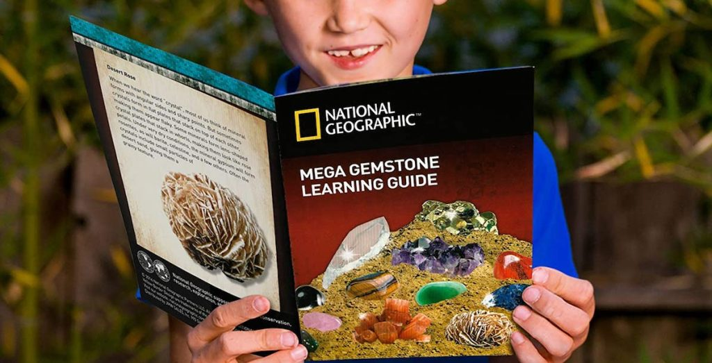 boy looking at a National Geographic rock guide