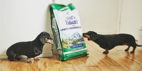Natural Balance Limited Ingredient Dog Food Just $4 Shipped on Amazon (Regularly $7)