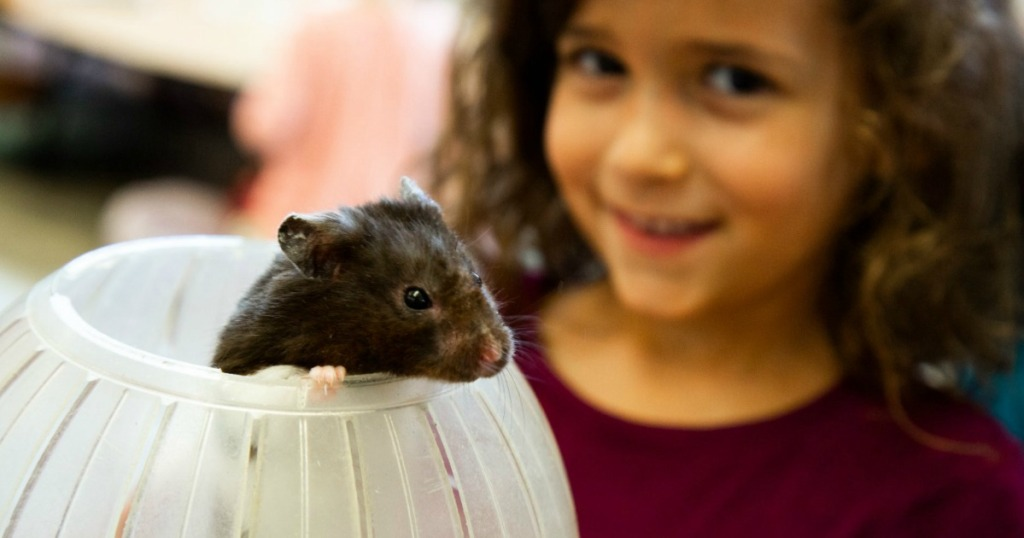 girl holding a mouse in a ball