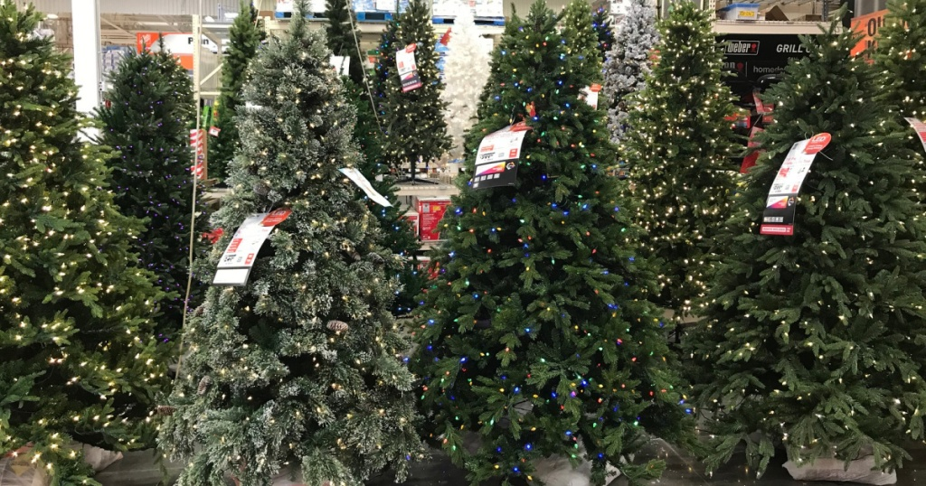 Christmas trees on store floor