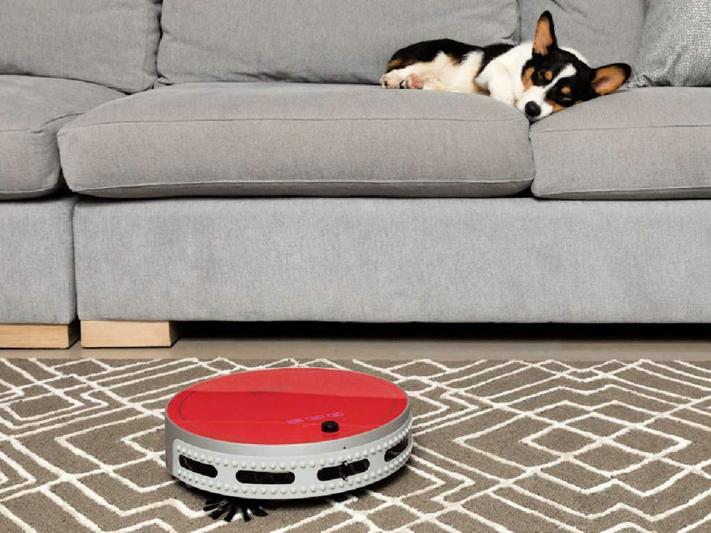 bObsweep bObi Pet Robot Vacuum on floor with dog on couch