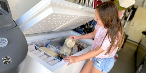 Upright Freezer Vs. Chest Freezer – Which One Should You Buy?