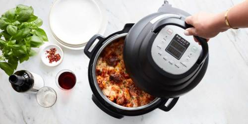 Turn Your Instant Pot into an Air Fryer w/ This Lid
