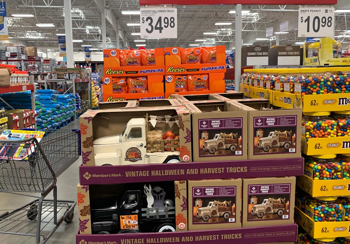 halloween and fall themed trucks on display in store