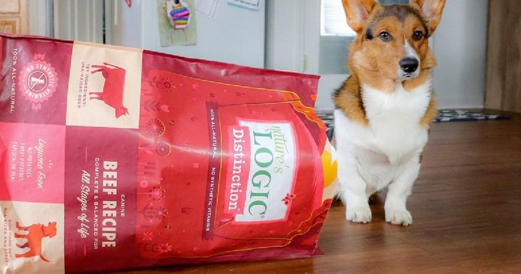 natures logic dog food on its side by dog