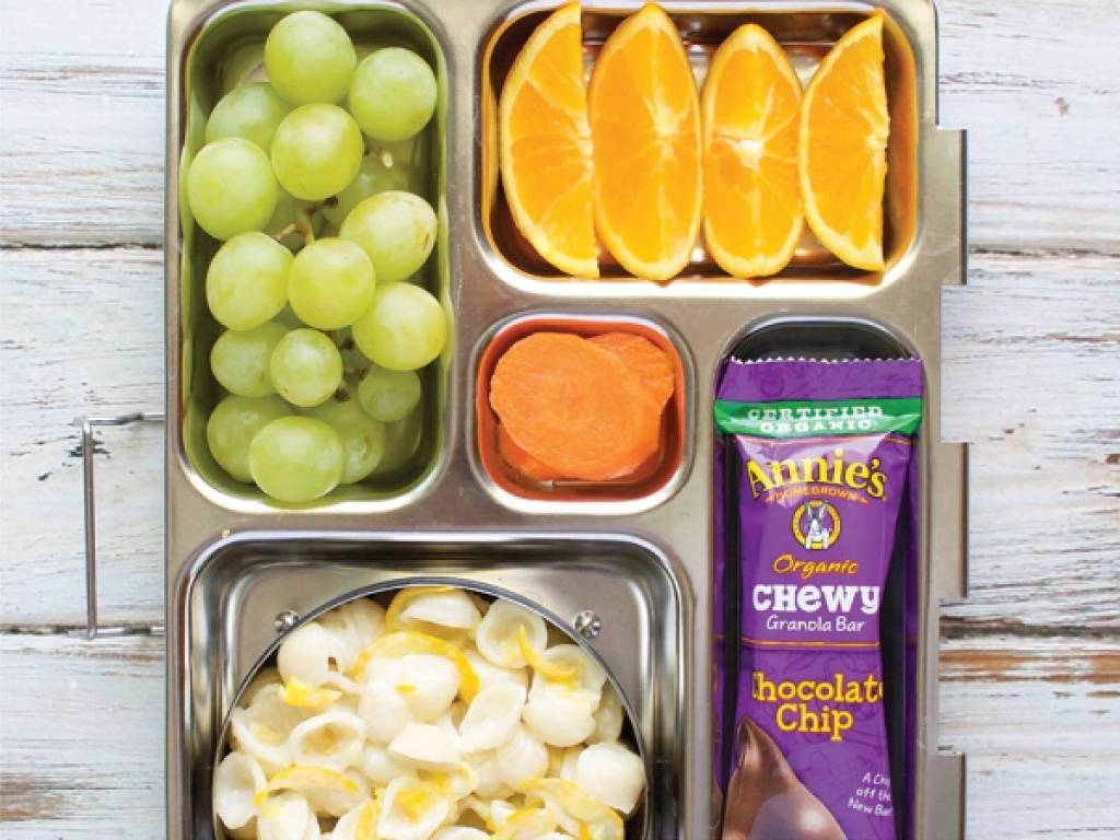 lunch box with fruit, carrots, mac n cheese, and chocolate chip granola bar