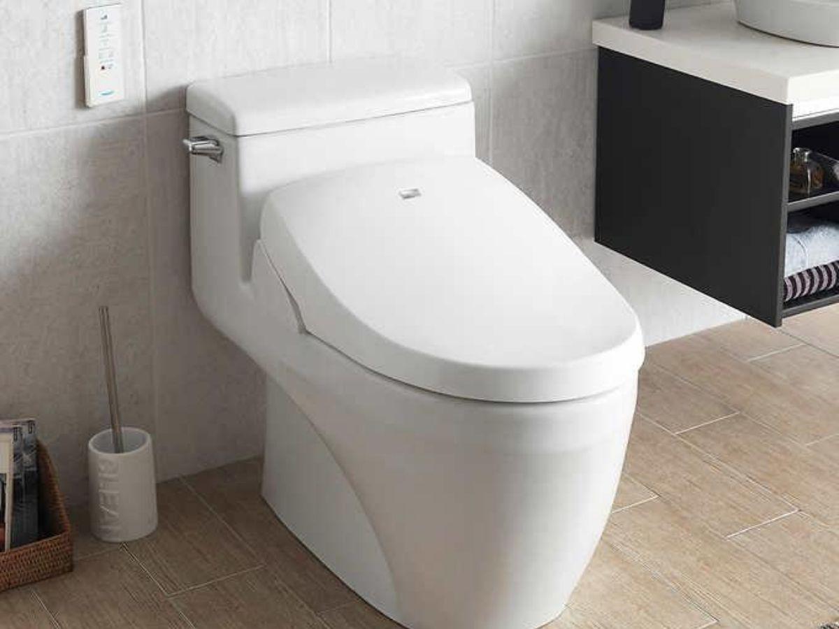 Bathroom toilet with bidet seat