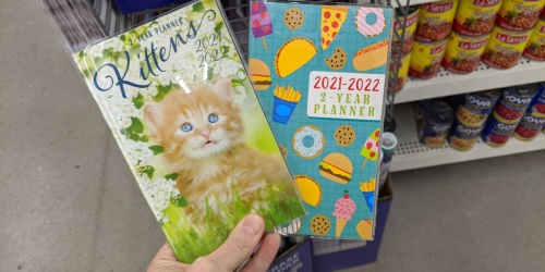 Monthly Planners & Wall Calendars Just $1 at Dollar Tree | Many Fun Styles
