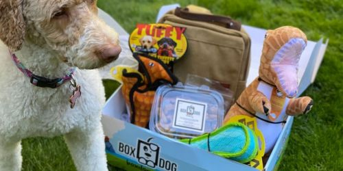 Over $125 Worth of Dog Toys & Treats Just $16 Shipped from BoxDog
