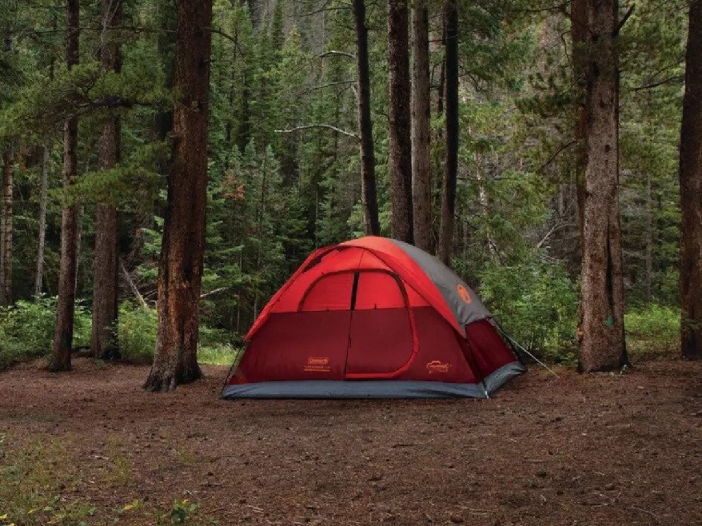 Coleman Flatwoods II 4 Person Tent in the woods