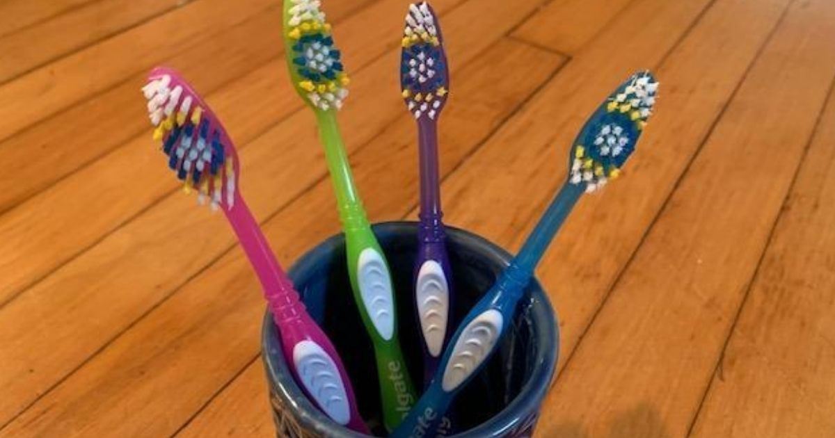 four toothbrushes in a cup