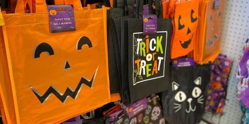 Halloween Costumes, Candy Totes & More Just $1 Each at Dollar Tree