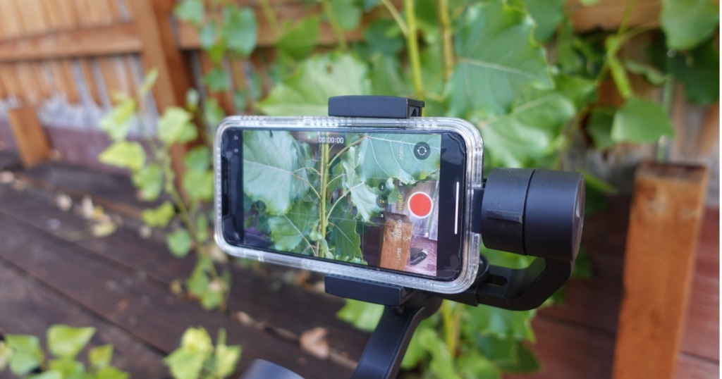 smartphone on camera stabilizer outdoors