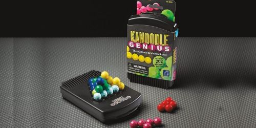 Educational Insights Kanoodle Genius Only $8.79 on Amazon (Regularly $13)