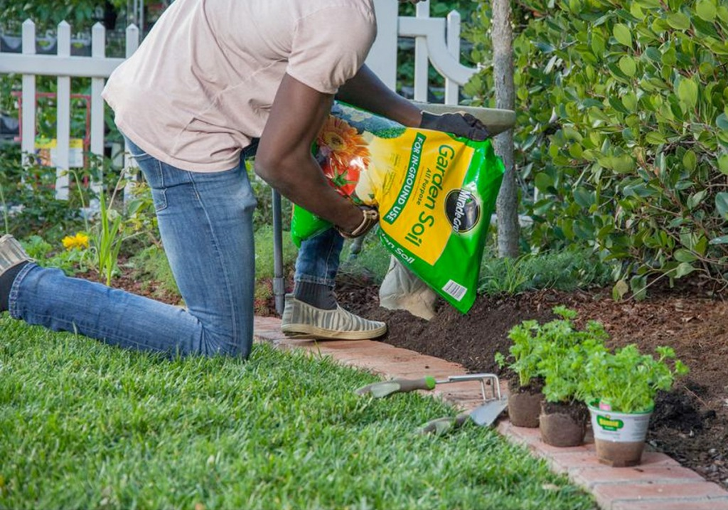 mean kneeling in garden and pouring a bag of miracle-gro garden soil around plants