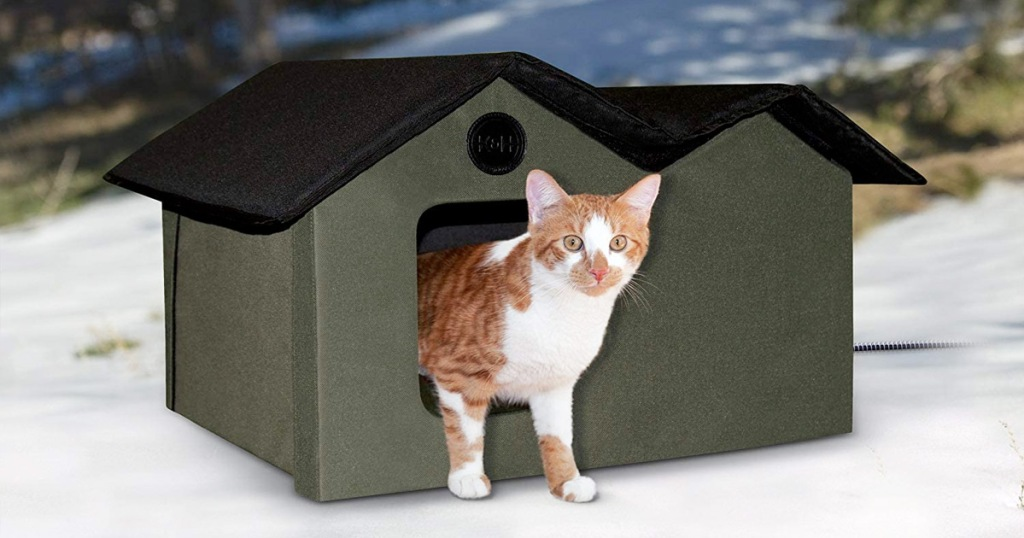 olive green cat house with black roof in snowy area with orange and white cat coming out from door
