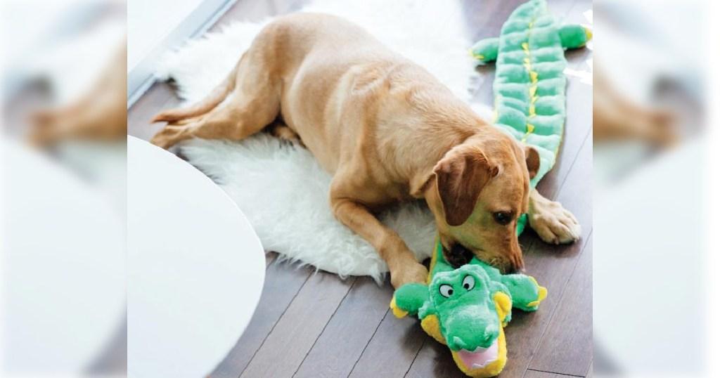 dog chewing on Outward Hound Gator Dog Toy