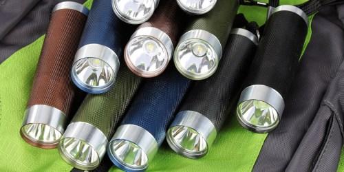 Ozark Trail 10-Pack Flashlight Set w/ 30 Batteries Only $5.97 on Walmart.com