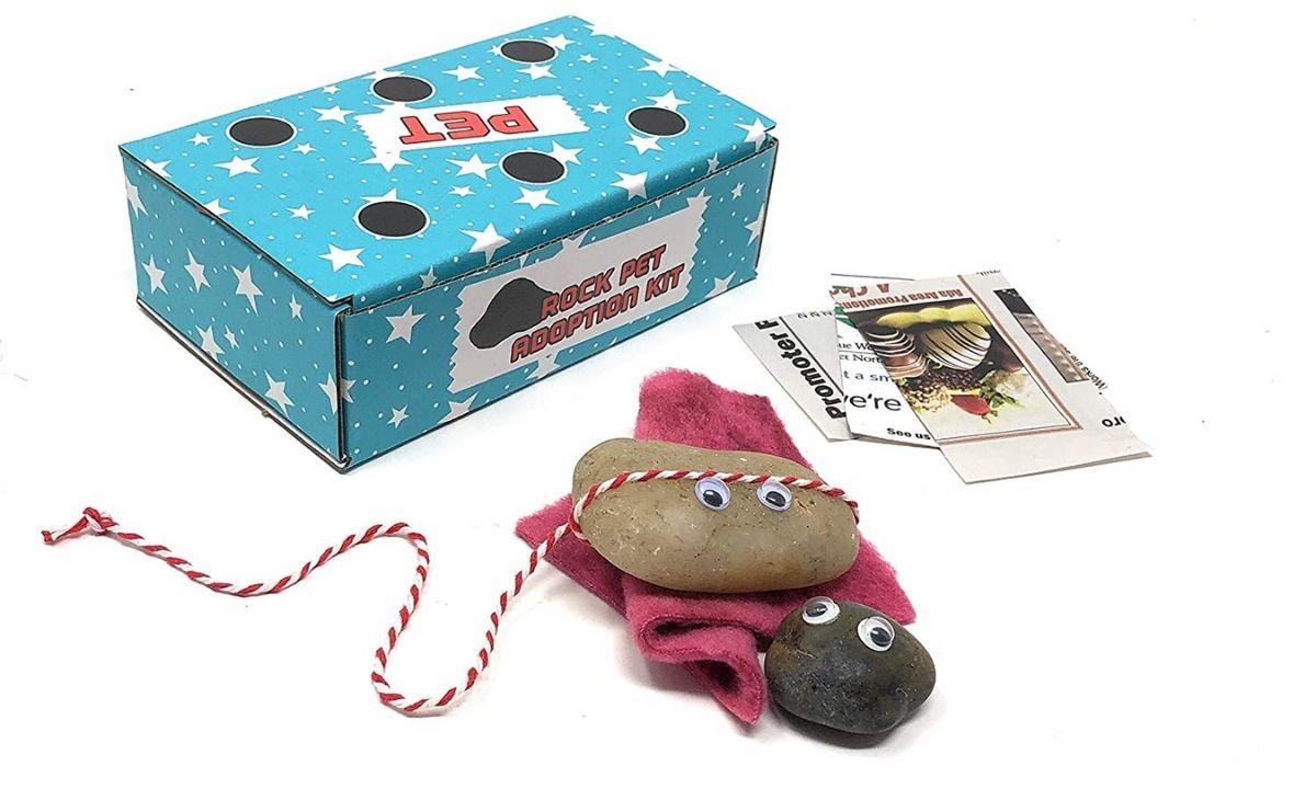 A pet rock kit
