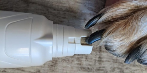 This Safe & Quiet Pet Nail Grinder is Only $15.99 on Amazon