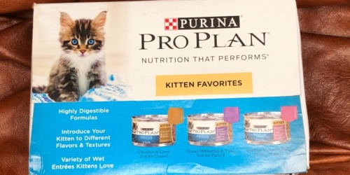 Purina Pro Plan Canned Kitten Food 24-Count Only $15 Shipped on Amazon | Just 64¢ Per Can
