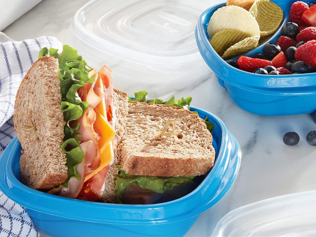 sandwich stored in marine blue rubbermaid container