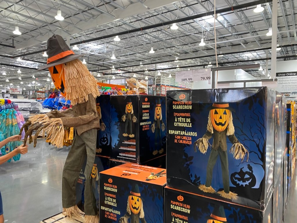 Scarecrow at Costco