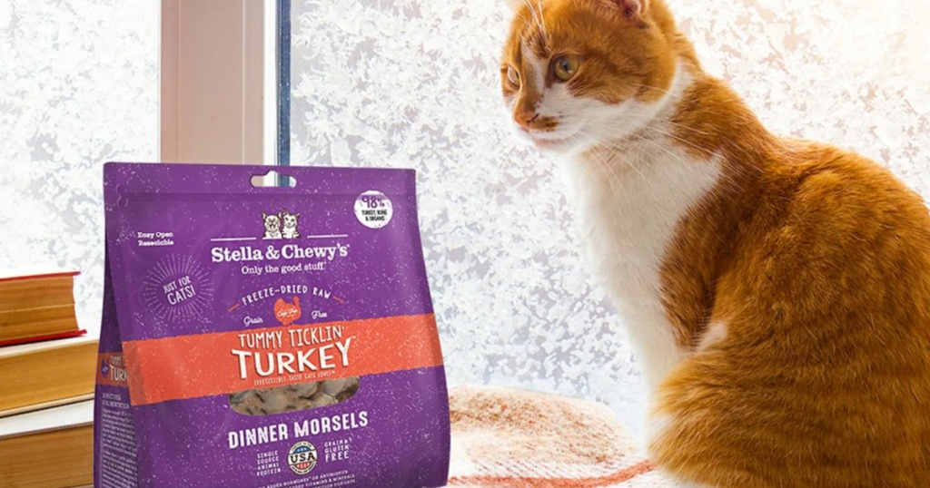 cat sitting next to a window looking at a purple bag of cat food