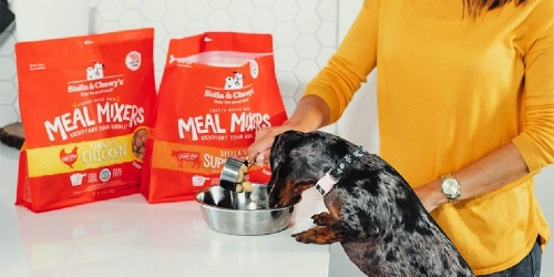 Stella & Chewy's Raw Dog Food Toppers from $14 Shipped on Amazon