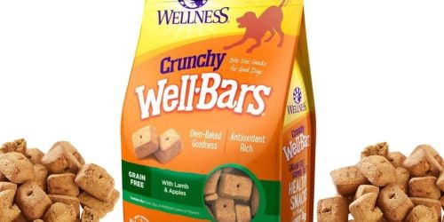 Crunchy Wellbars Dog Treats 20oz Only $5.41 Shipped on Amazon (Regularly $9)