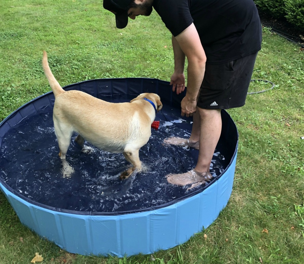 man and dog in small pool