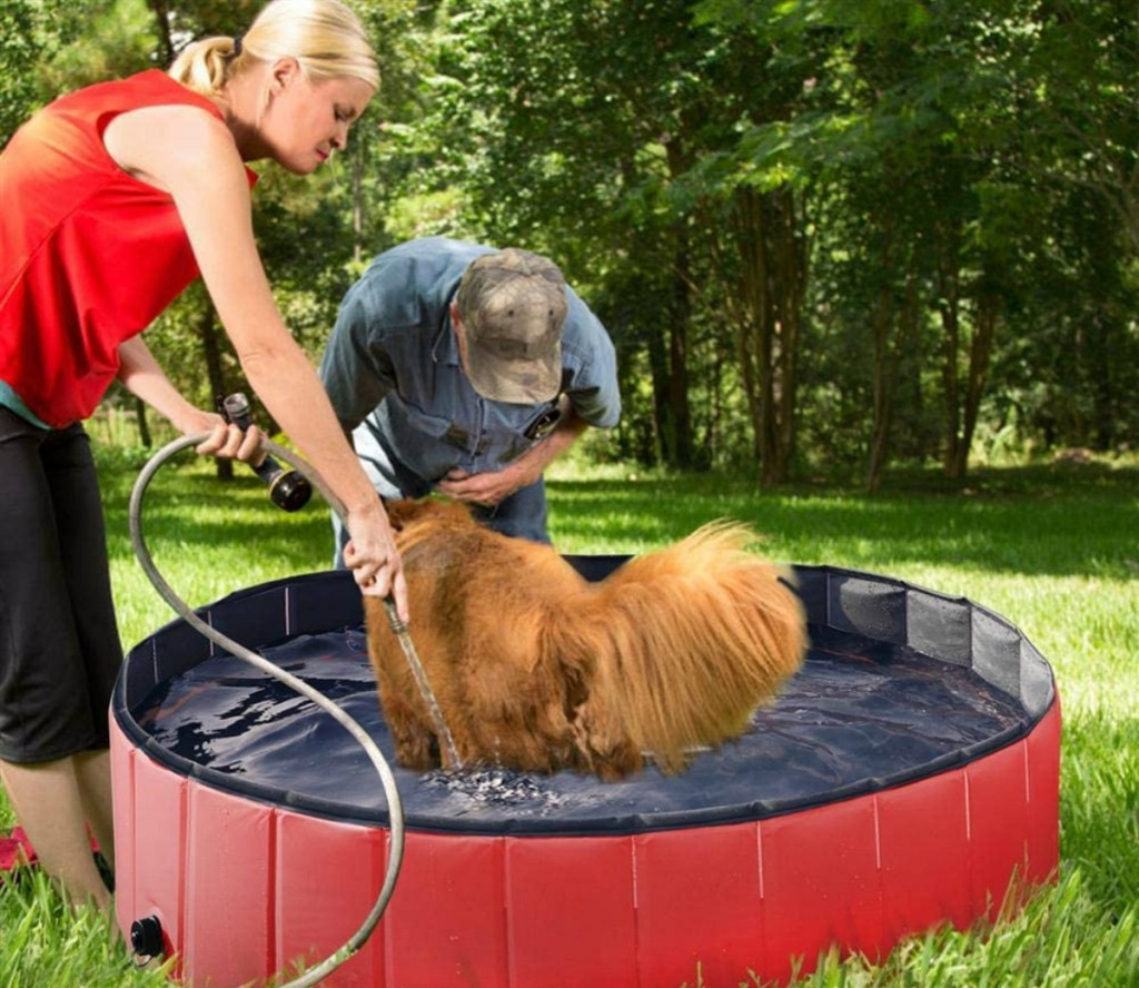 woman rinsing dog in a small pool