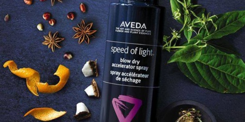 FREE Aveda Blow Dry Essentials Set w/ Purchase | $48 Value