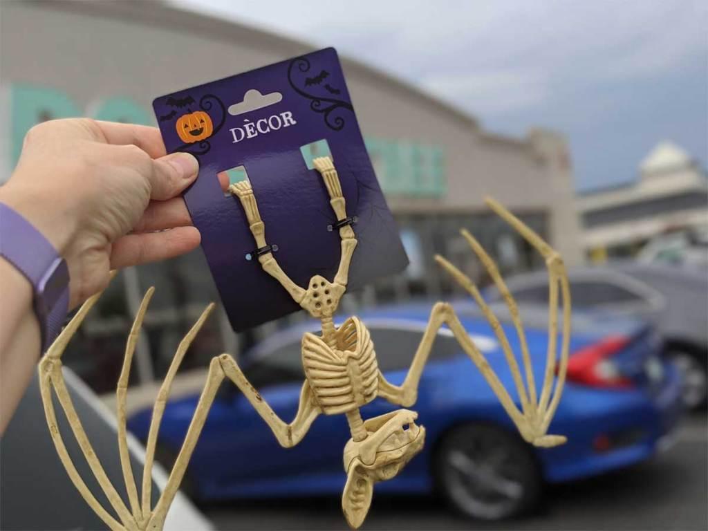 Bat skeleton from Dollar Tree