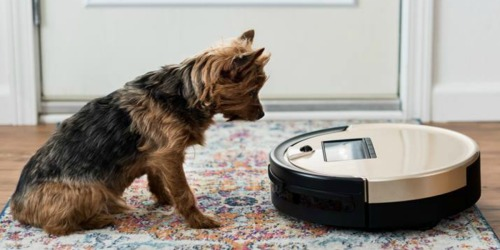 bObsweep Robotic Vacuum Just $179 Shipped on HomeDepot.com | Sweeps, Mops & Vacuums