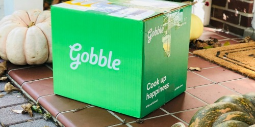 Hot & Fresh Homemade Dinners Ready in Just 15 Minutes With Gobble Meals!