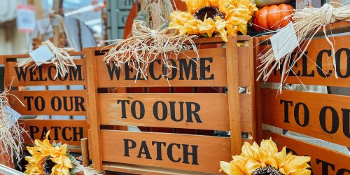 Style a Fall Front Porch for Less Than $30 at Hobby Lobby