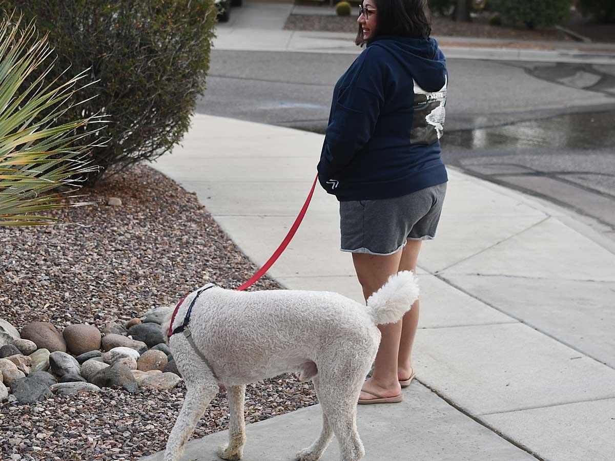 woman walking dog wearing hoodie and shorts