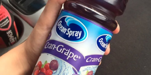 FREE Ocean Spray Juice 25oz for Big Lots Rewards Members Thru April 11th