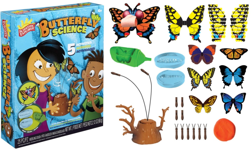 Butterfly Science Kit with accesories