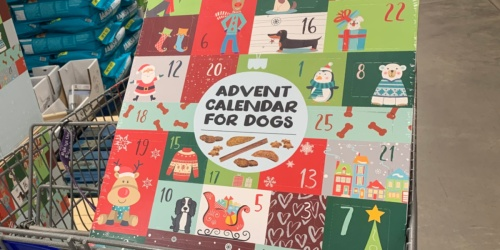 Advent Calendar For Dogs Only $9.98 at Sam's Club | Includes 35 Natural Treats